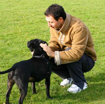 perro-y-dueño cuidados