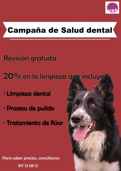 cartel salud dental