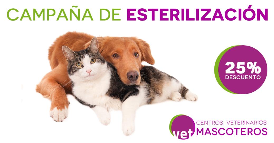 Esterilización CVM - Facebook ADS